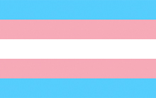 Courtesy of http://point5cc.com/the-history-of-the-transgender-flag/