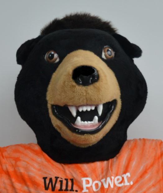 Exclusive Interview With The University's President Billy the Bear
